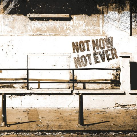 DH 3 // NOT NOW NOT EVER